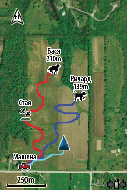 Карты Garmin Astro 320