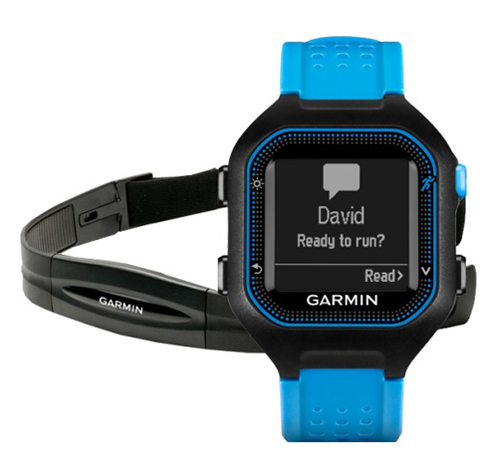 Спортивные часы Garmin Forerunner 25 Large Black/Blue HRM1